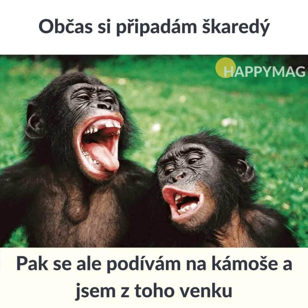 sarkastické vtipy