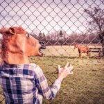 20 zajímavých faktů z psychologie, které změní váš pohled na svět